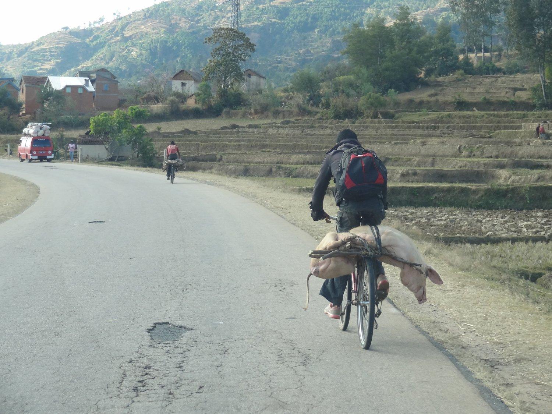 Madagascar onderweg fietser