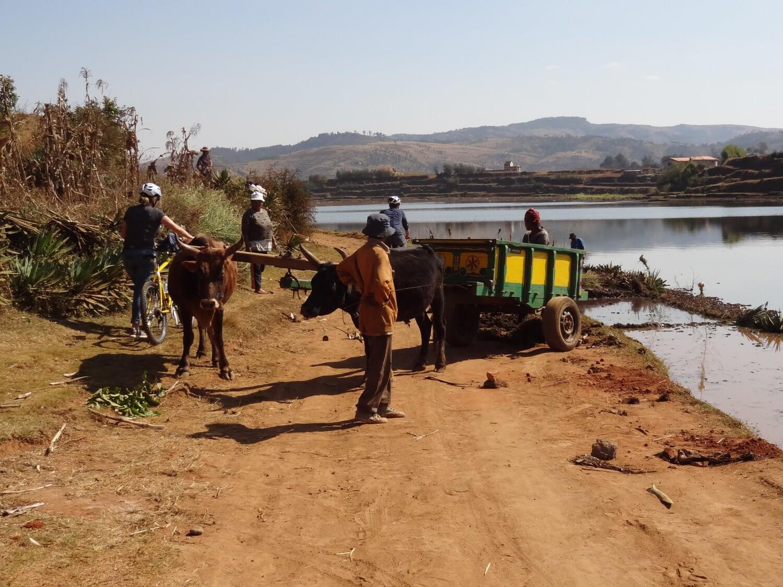 Fietstocht Antsirabe
