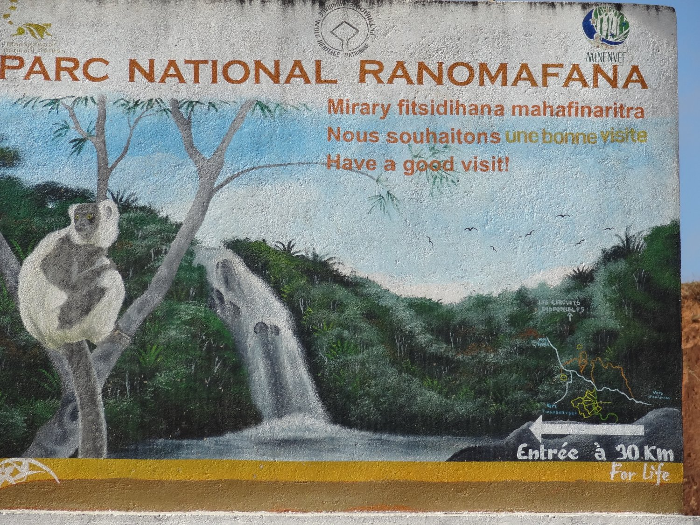 Madagascar Ranomafana National Parc