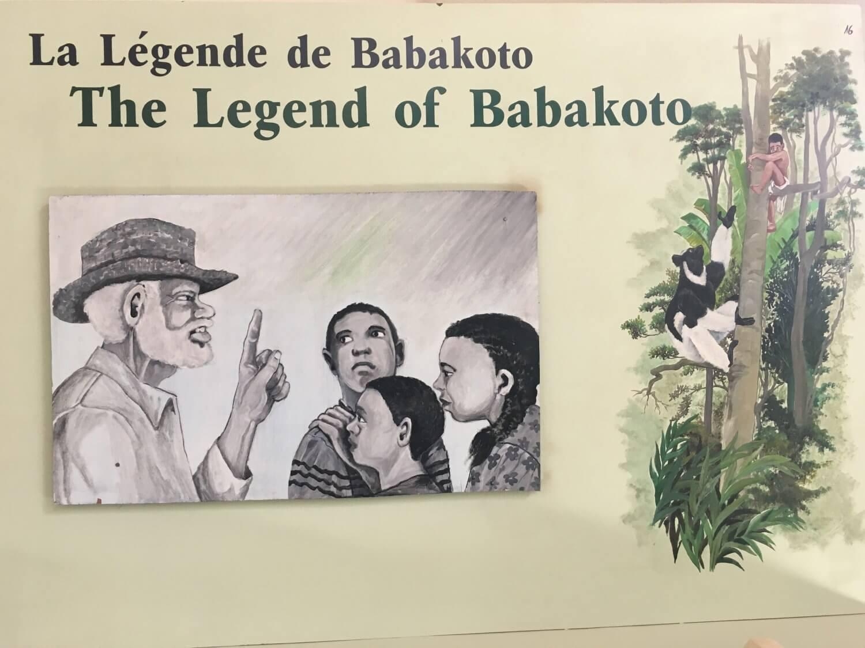 Madagascar Andasibe Babakoto