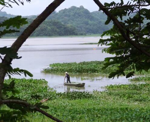 Panama Soberiana NP