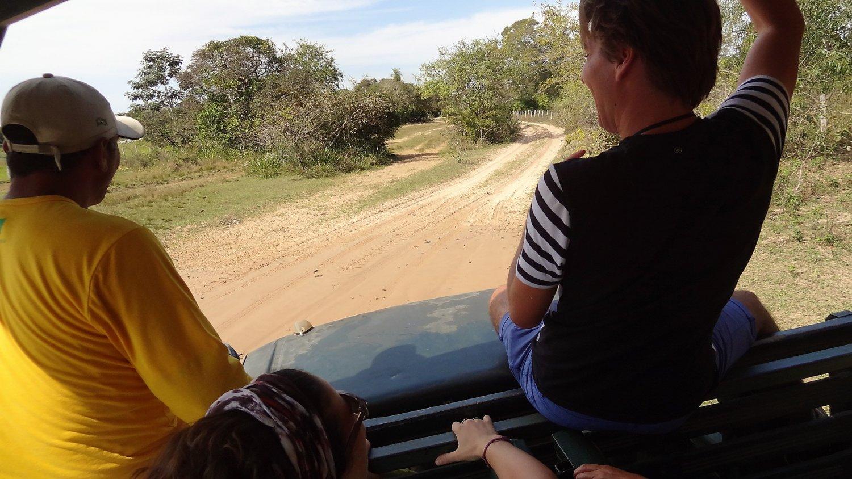 Pantanal Safari