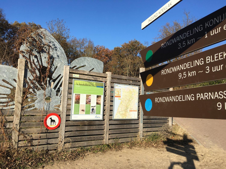 Duin tot Duin wandeling Zuid Kennemerland