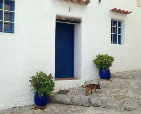 Ibiza Dalt Villa