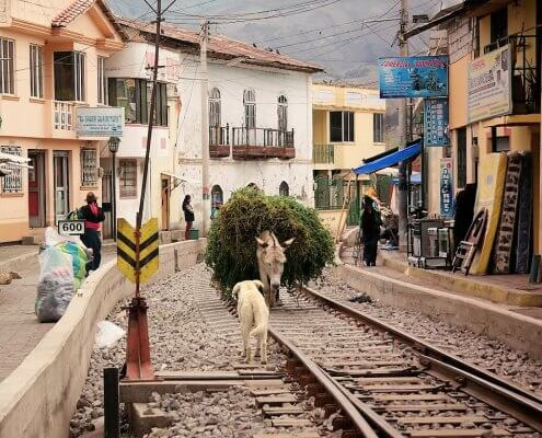 Ecuador straatbeeld Guamote